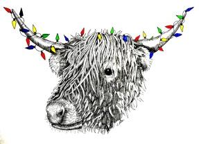 highland cow 3.jpg