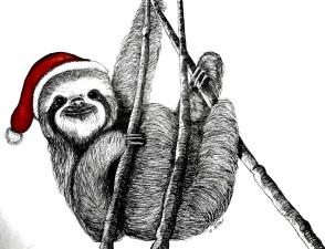 sloth 3.jpg
